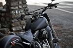 Harley Softail Slim_001